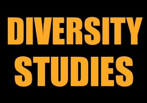 Diversity-Studies-620x436.jpg