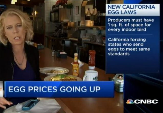 https://www.cnbc.com/video/2014/12/31/cali-egg-rules.html