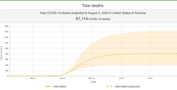https://covid19.healthdata.org/